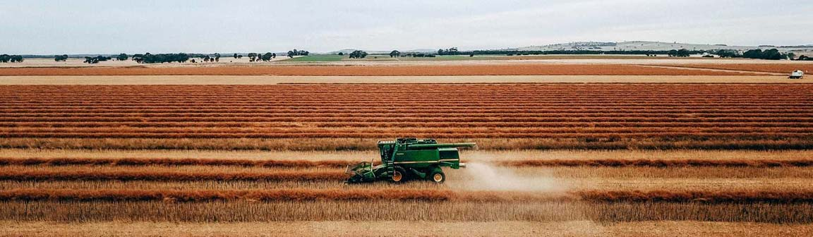 IKCaldwell-agronomy-agriculture-services-harvest2